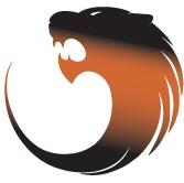 Анонс: конференция Tiger Optics Security Roadshow